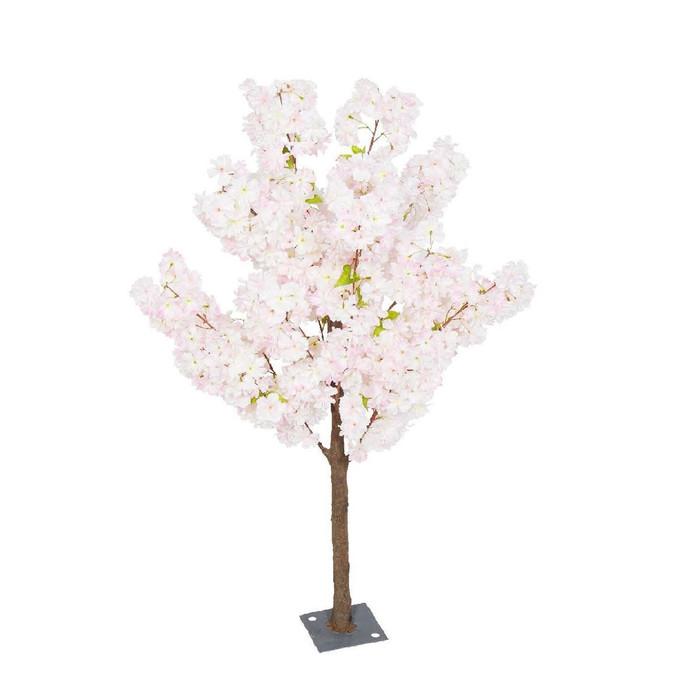 2 Cherry Blossom Pink rental 1