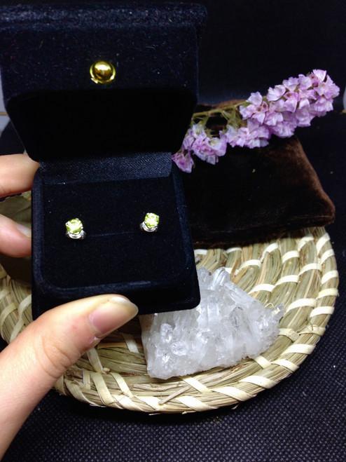 Austalian Peridot -  Sterling Silver Stud Earrings