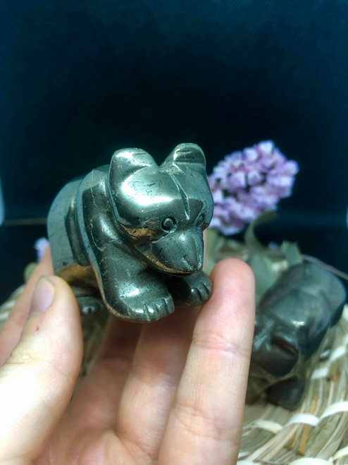 pyrite bears
