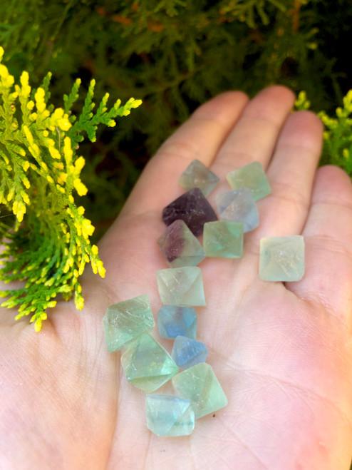 Fluorite octohedrons