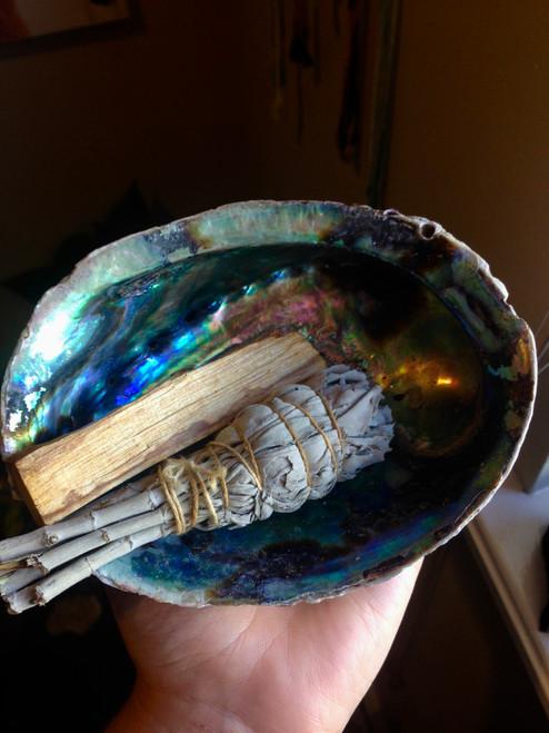 Abalone Smudging ritual shell