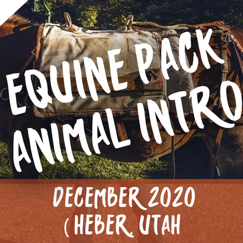 Equine Pack Animal Intro, Selection and Cost 5 December 2020 ( Heber, Utah )