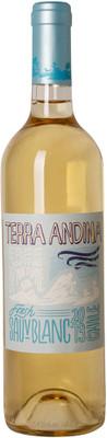 Terra Andina 2013 Sauvignon Blanc 750ml