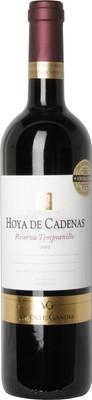 Vincente Gandia 2010 Hoya de Cadenas Reserva Tempranillo 750ml