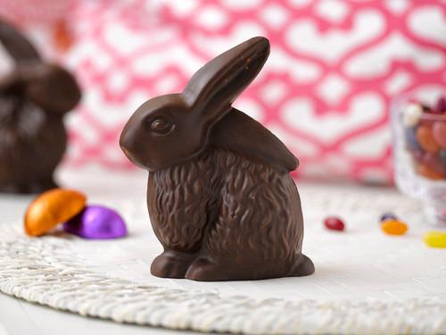 Organic Milk Chocolate Bunny View Product Image