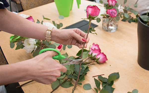 cutting rose stems with scissors