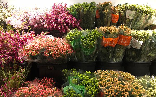 wax flowers on display