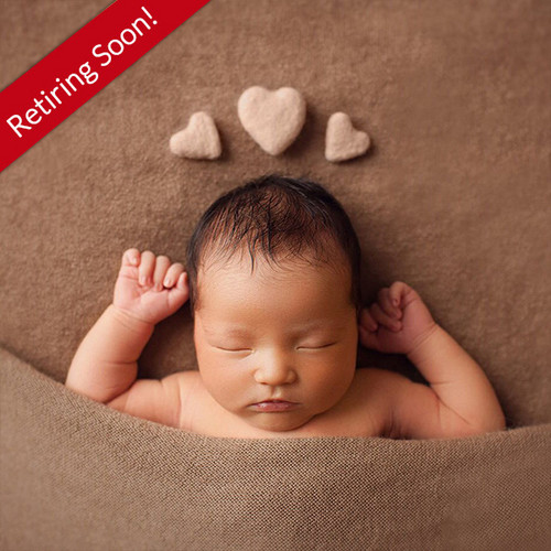 The Hybrid Newborn Photographer: Merging Posed & Lifestyle Newborn Portraits with Chelsey Hill