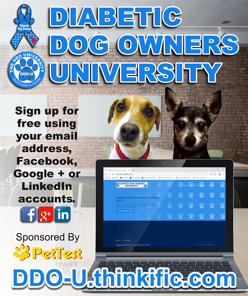 Click here to join DDO University!