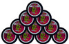 Jake's Mint Herbal Chew Pouches Cherry 10 Cans
