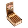 Curivari Achilles Odisseus Cigars - 6 x 52 (Box of 10)
