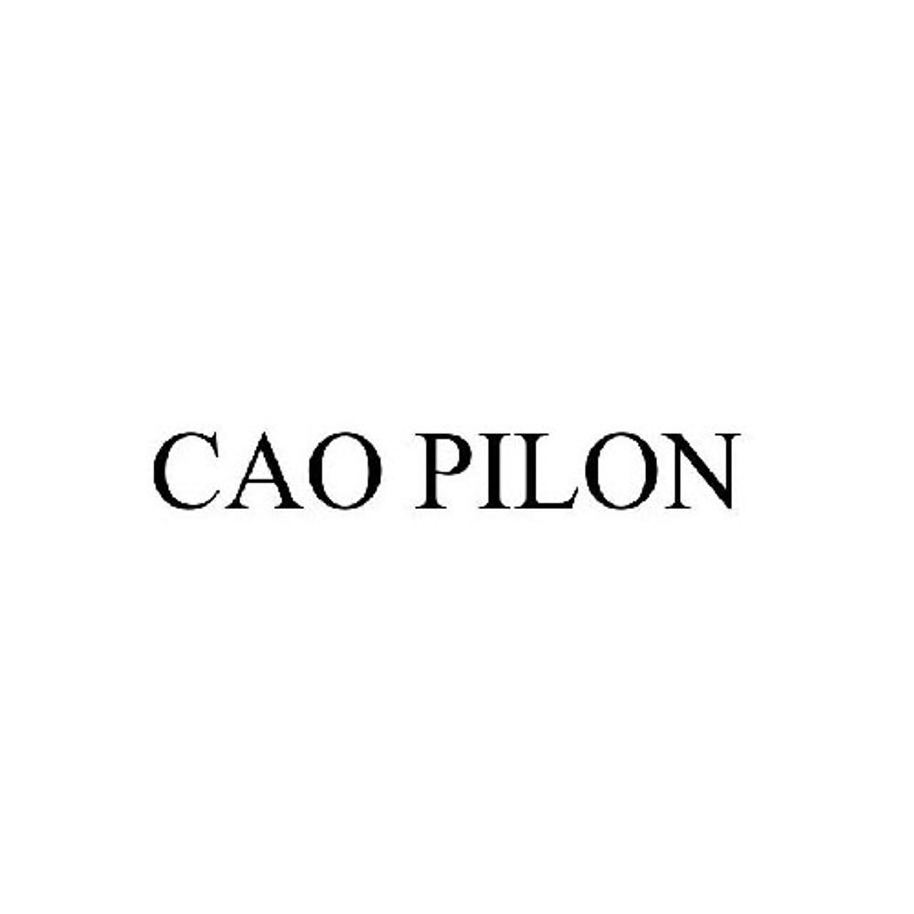 CAO Pilon Robusto Cigars - 5 x 52 (Box of 20)