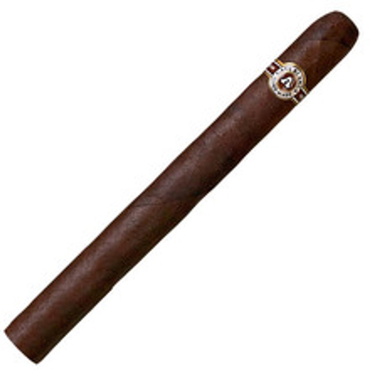 Casa Blanca Jeroboam Maduro Cigars - 10 x 66 (Bundle of 10)