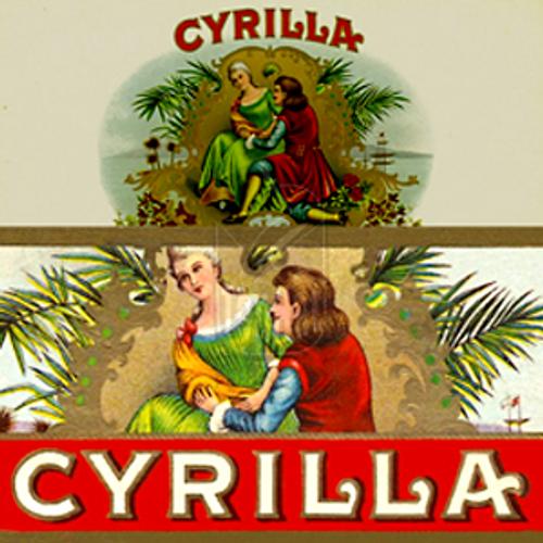 Cyrilla Slims Natural Cigars - 6 1/2 x 36 (Box of 25)