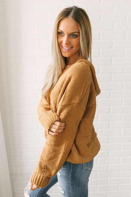 Winter Travels Chenille Hoodie - Camel