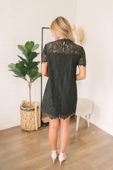 High Neck Scalloped Lace Shift Dress - Black - FINAL SALE