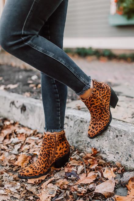 Madden Girl Klicck Booties - Leopard