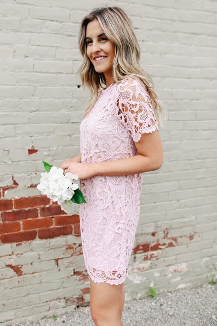 Short Sleeve Pink Crochet Shift Dress