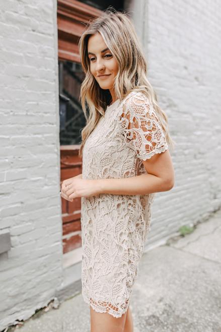 Short Sleeve Taupe Crochet Shift Dress