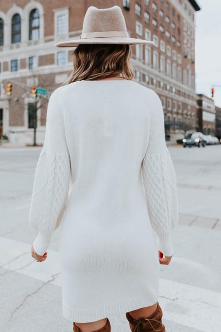 BB Dakota Seen Sweater Days Dress