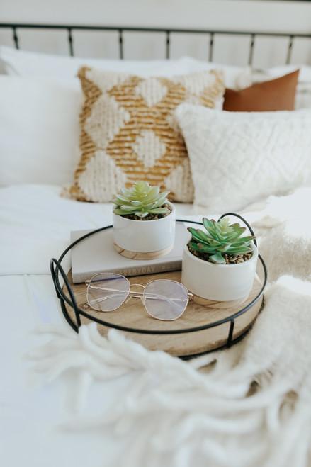 Ceramic Artificial Succulent Set