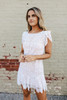 BB Dakota Fast Lace Environment Ivory Dress