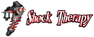 Shock Therapy