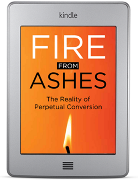 Fire from Ashes (ebook) by Joseph Huneycutt