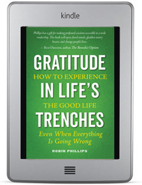 Gratitude in Life's Trenches (ebook)