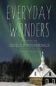Everyday Wonders: Stories of God's Providence by V Rev Michael Oleksa cover