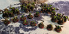 50mm Squad Trays