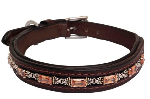 Dog Collar Large Treasure Large Design