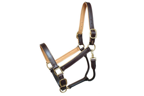Leather Halter Brown with Honey Liner Design