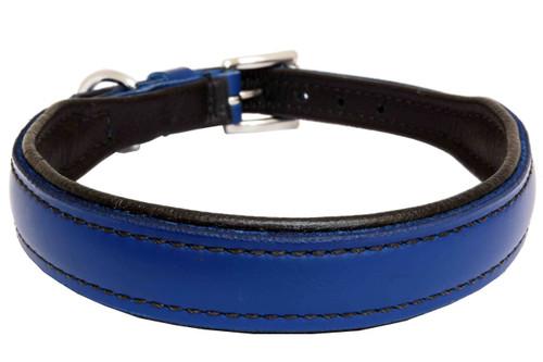 Dog Collar Leather Medium Royal Blue Black Liner Design