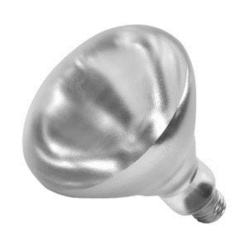 Heat Lamp Bulb Clear