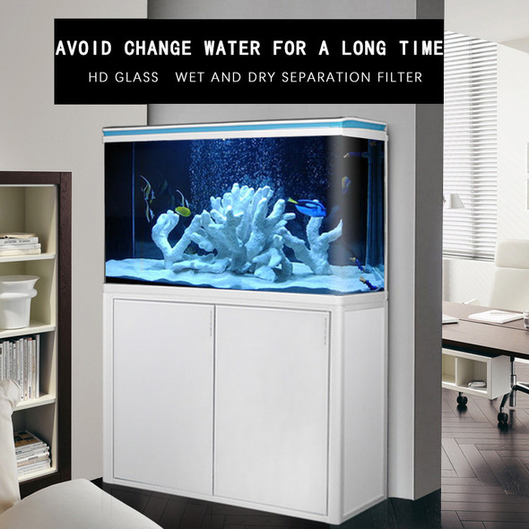 where to find fish tank singapore