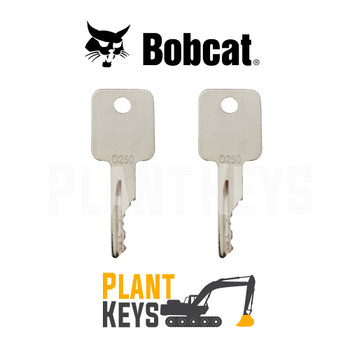 Bobcat & Case Skidsteer (2 Keys)