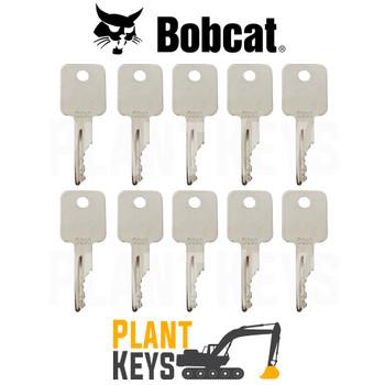 Bobcat & Case Skidsteer (10 Keys)