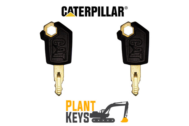 Caterpillar 5P8500 (2 Keys)