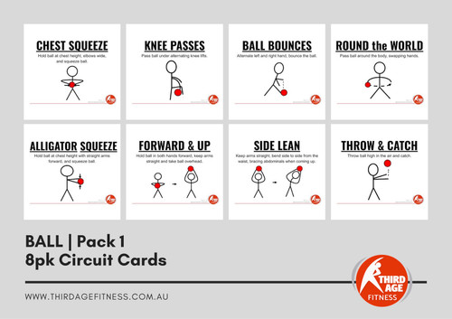 Ball Exercise Circuit Card Pack #1 Summary