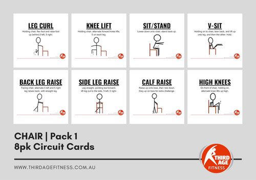 Chair Exercise Circuit Card Pack #1 Summary