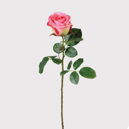 Pink Single Rose Stem