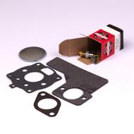 Briggs & Stratton 394989 Kit-Carb Overhaul