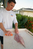 Dexter outdoors moldable hande makes skinning easy