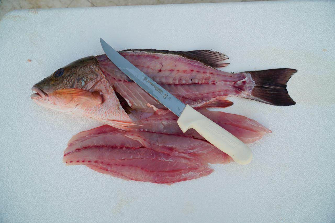 S138  8 inch Sani-Safe® wide fillet knife