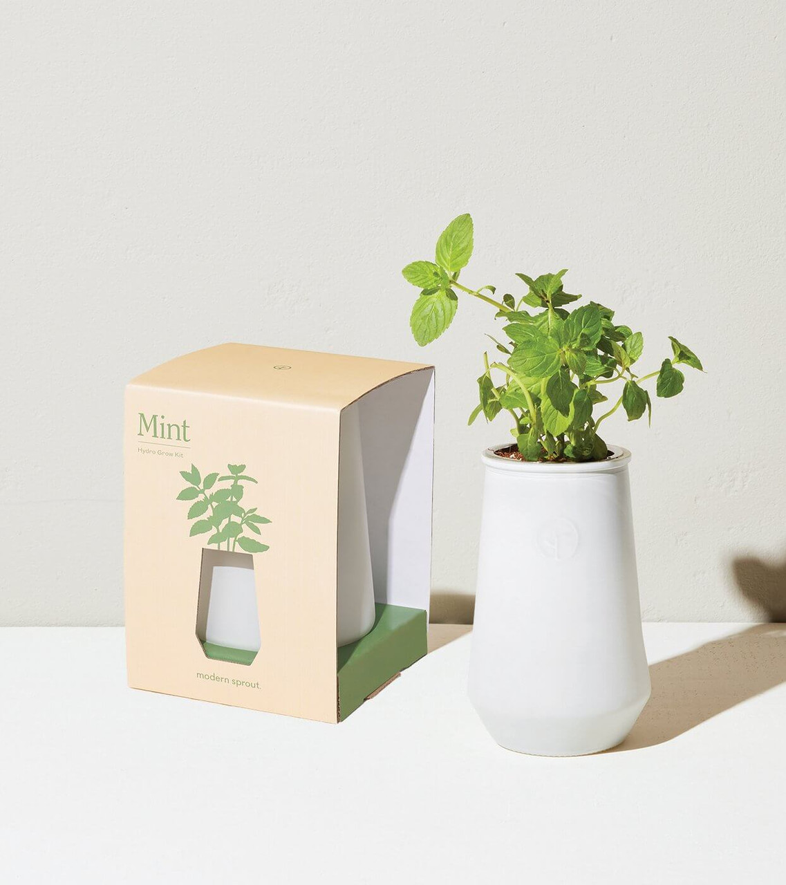 Modern sprout mint hydro grow kit