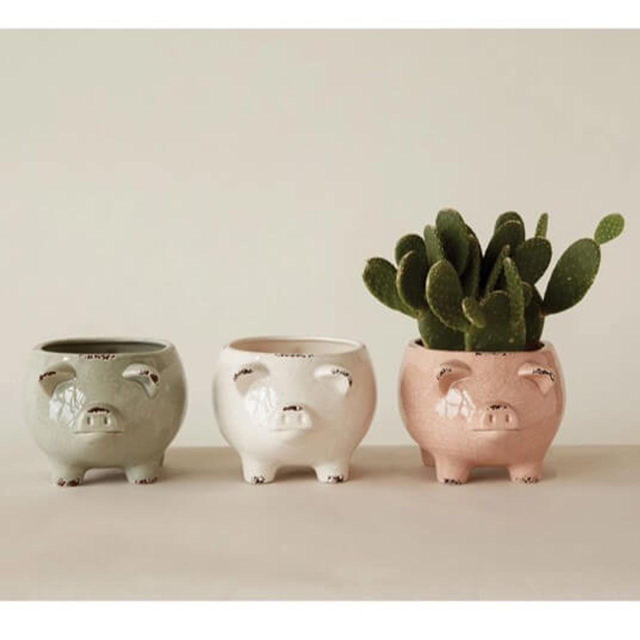 Creative Co-op pig planter distressed finish