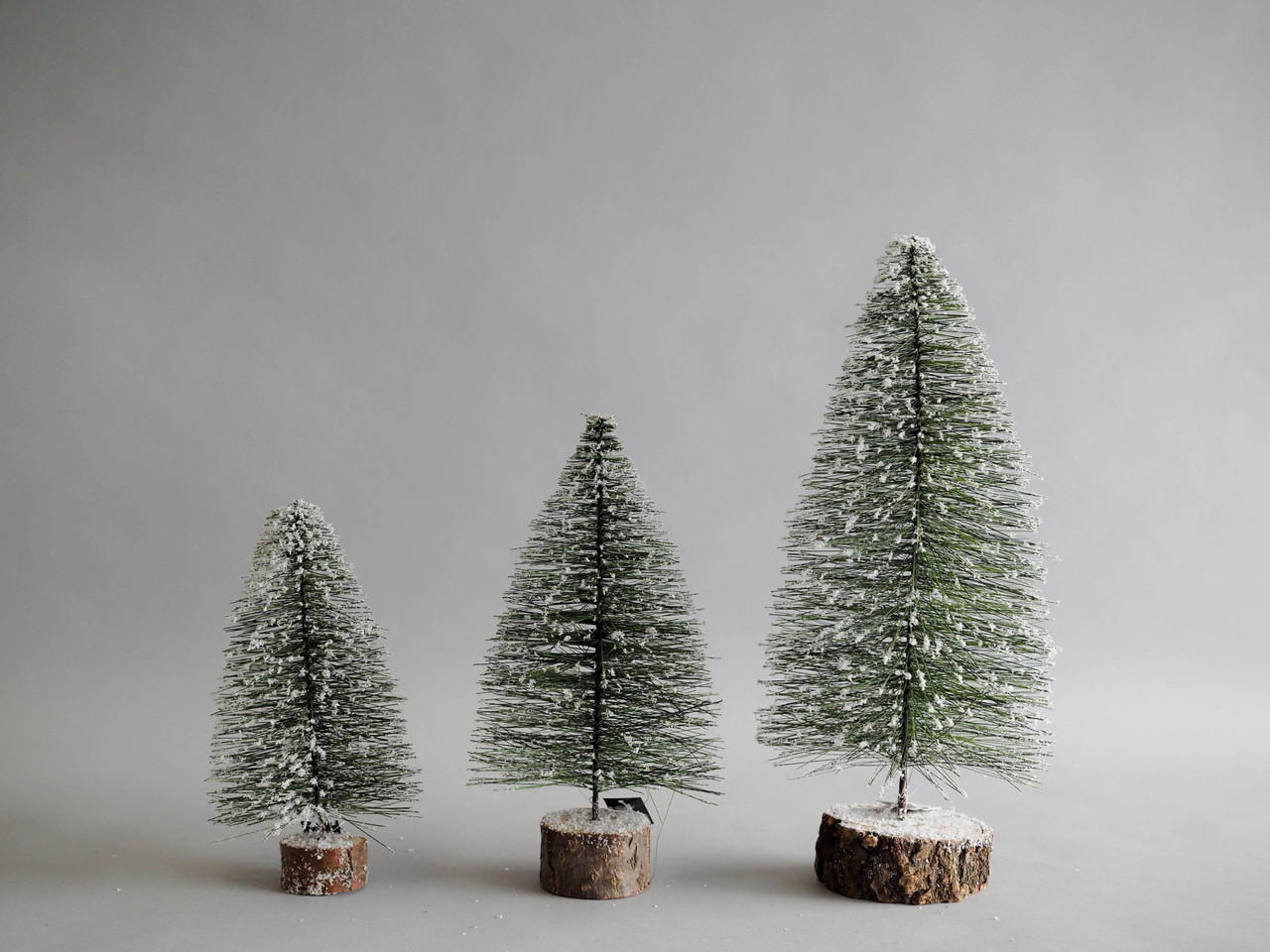 miniature pine tree with wood base