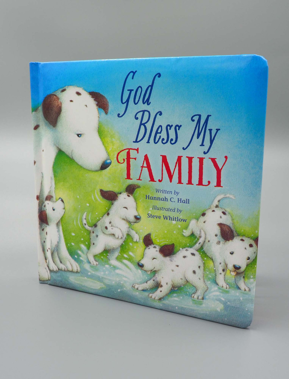 god bless my family baby book