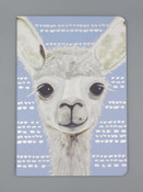 alpaca notebook studio oh